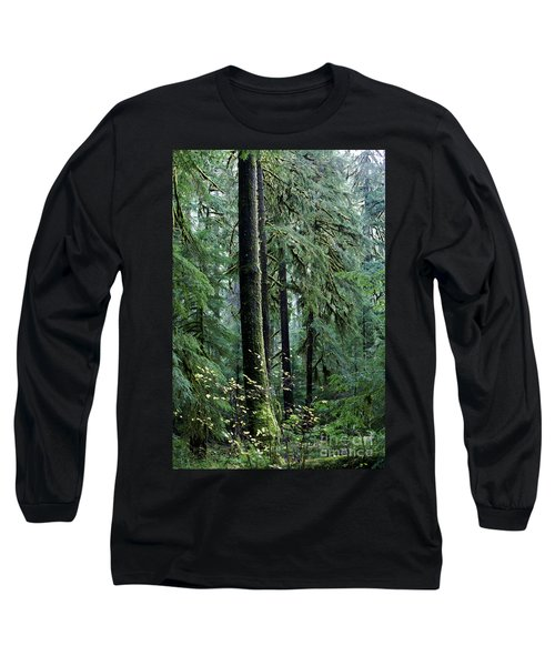 Welcome To The Woods Long Sleeve T-Shirt by Jane Eleanor Nicholas