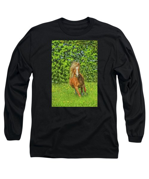 Welsh Pony Long Sleeve T-Shirt