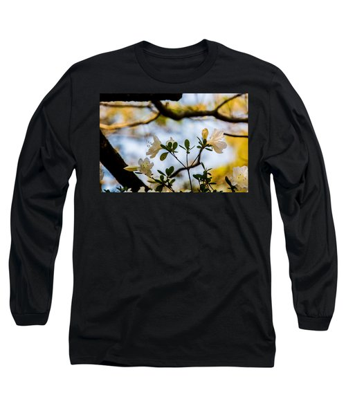 Whie Azaleas Under A Dogwood Tree Long Sleeve T-Shirt by John Harding