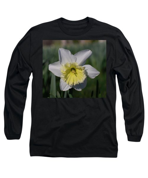 White And Yellow Daffodil Long Sleeve T-Shirt