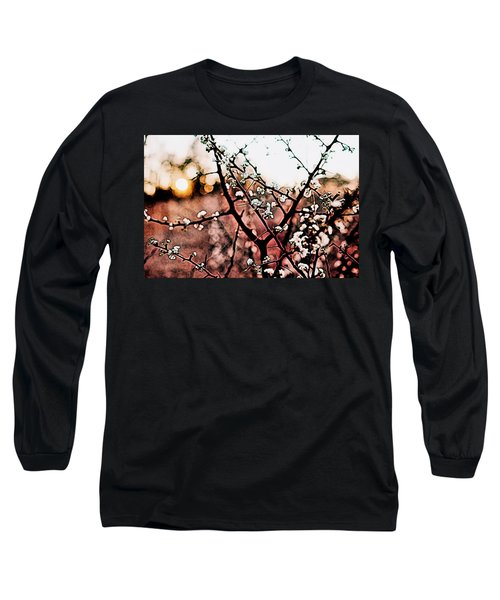 White Blossom Branches Long Sleeve T-Shirt by Carol Crisafi