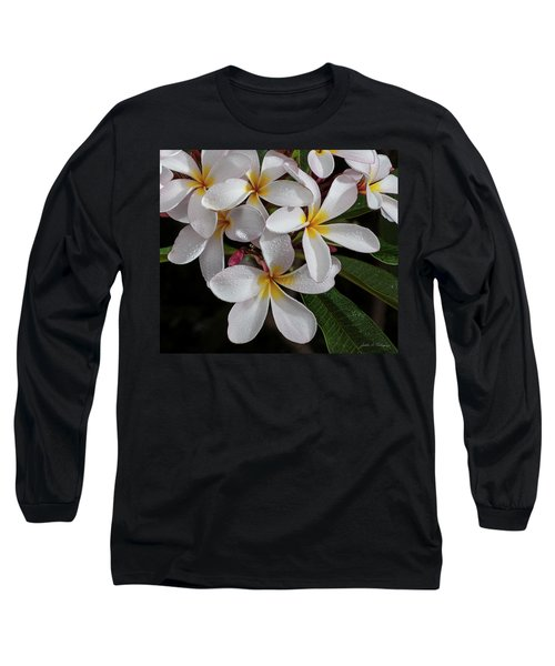 White/yellow Plumerias In Bloom Long Sleeve T-Shirt