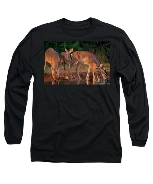 Long Sleeve T-Shirt featuring the photograph Whitetail Deer At Waterhole Texas by Dave Welling