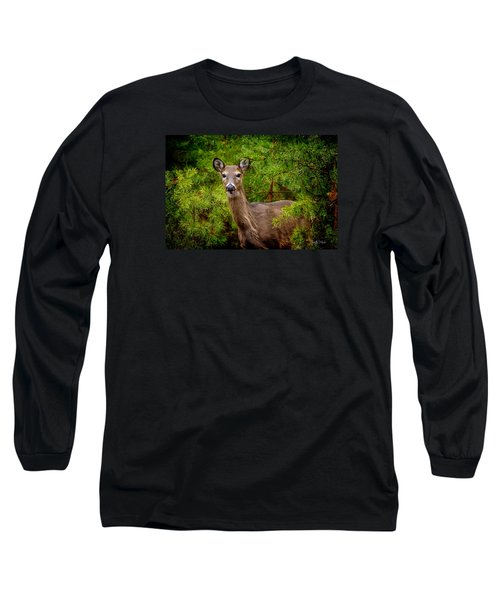 Whitetail In The Pines Long Sleeve T-Shirt
