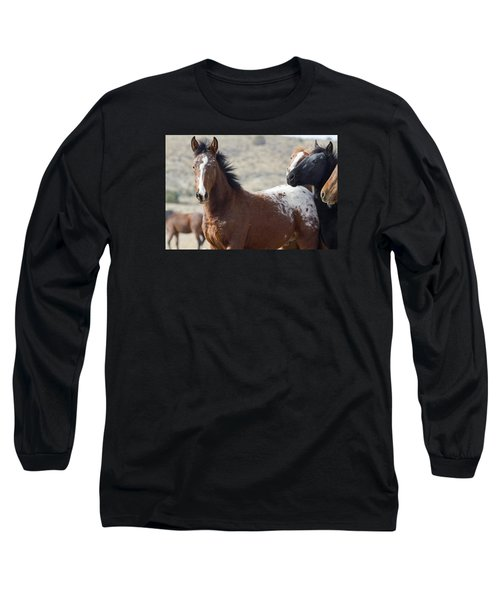 Wild Appaloosa Mustang Horse Long Sleeve T-Shirt