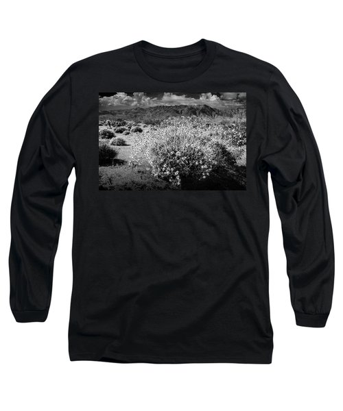 Long Sleeve T-Shirt featuring the photograph Wild Desert Flowers Blooming In Black And White In The Anza-borrego Desert State Park by Randall Nyhof