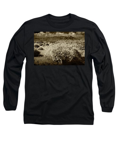Long Sleeve T-Shirt featuring the photograph Wild Desert Flowers Blooming In Sepia Tone  by Randall Nyhof