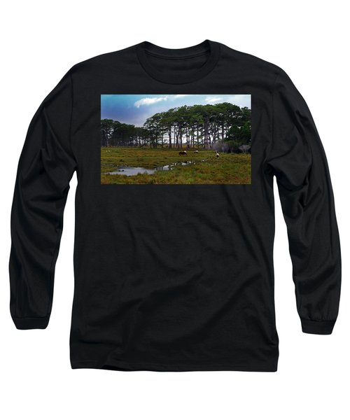 Wild Ponies Of Assateague Long Sleeve T-Shirt