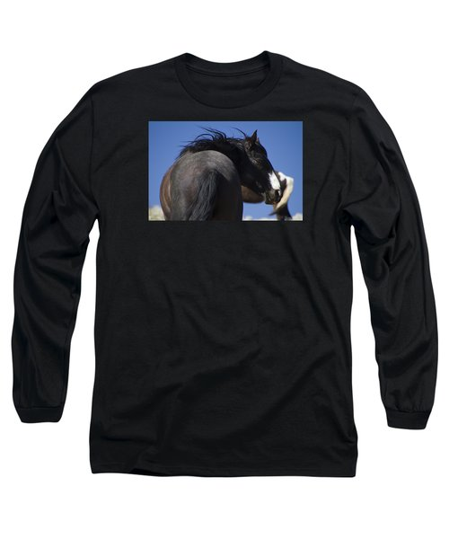 Wild Stallion  Long Sleeve T-Shirt