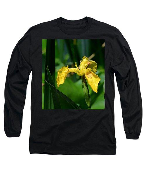 Wild Yellow Iris Long Sleeve T-Shirt
