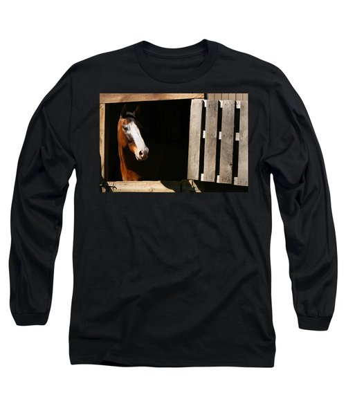 Window Long Sleeve T-Shirt by Angela Rath