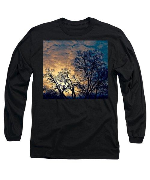 Winter's Afternoon Long Sleeve T-Shirt by Rita Mueller