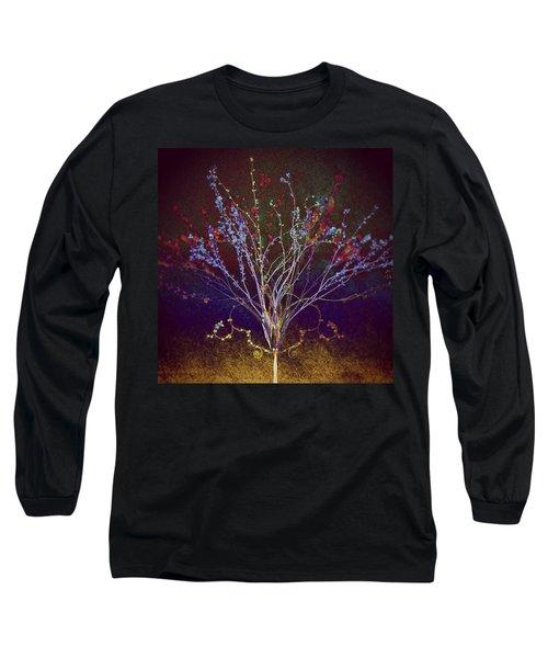 Wisdom Does Not Show Itself Long Sleeve T-Shirt