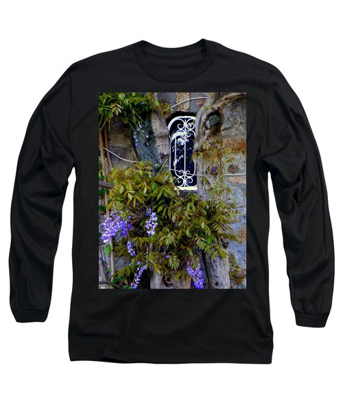 Wisteria Window Long Sleeve T-Shirt by Lainie Wrightson