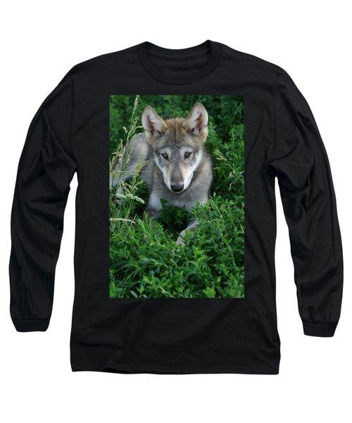 Wolf Pup Portrait Long Sleeve T-Shirt by Shari Jardina