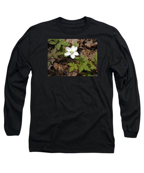 Long Sleeve T-Shirt featuring the photograph Wood Anemone by Linda Geiger