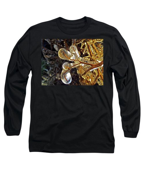 Wrapped In Ice Long Sleeve T-Shirt