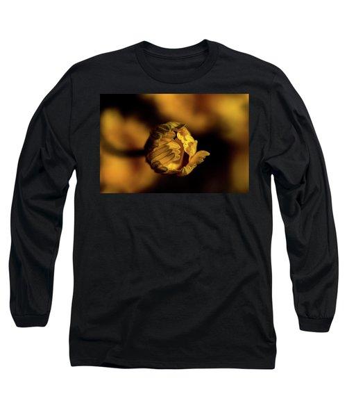 Yelllow Long Sleeve T-Shirt by Jay Stockhaus
