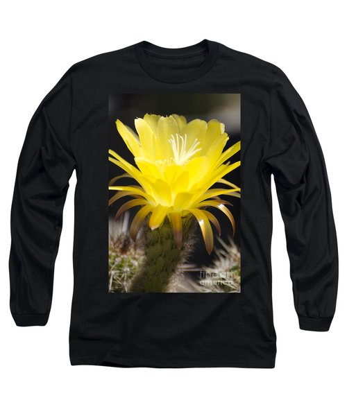 Yellow Cactus Flower Long Sleeve T-Shirt by Jim And Emily Bush
