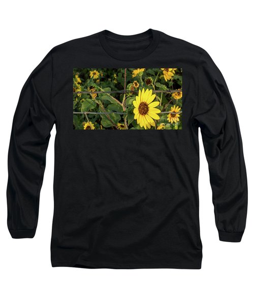 Yellow Flower Escaping From A Barb Wire Fence Long Sleeve T-Shirt