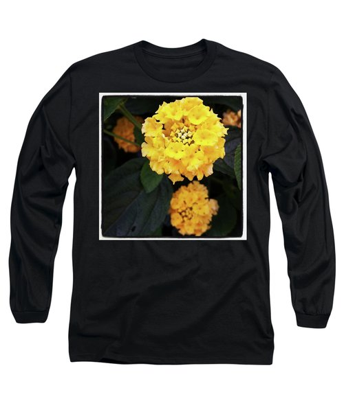 Long Sleeve T-Shirt featuring the photograph Yellow Lantanas Along The Scenic Drive by Mr Photojimsf