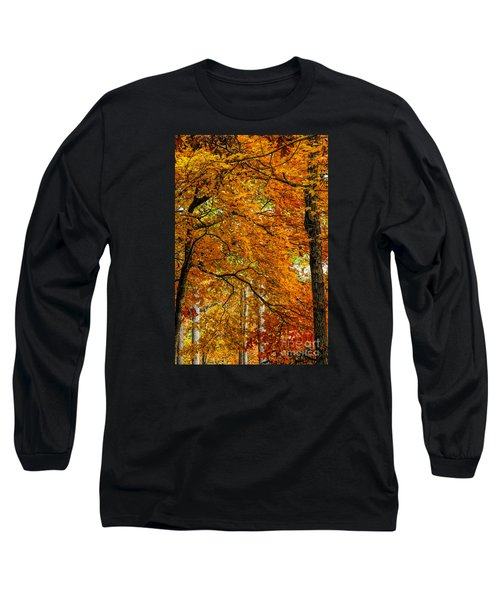 Yellow Leaves Long Sleeve T-Shirt by Barbara Bowen