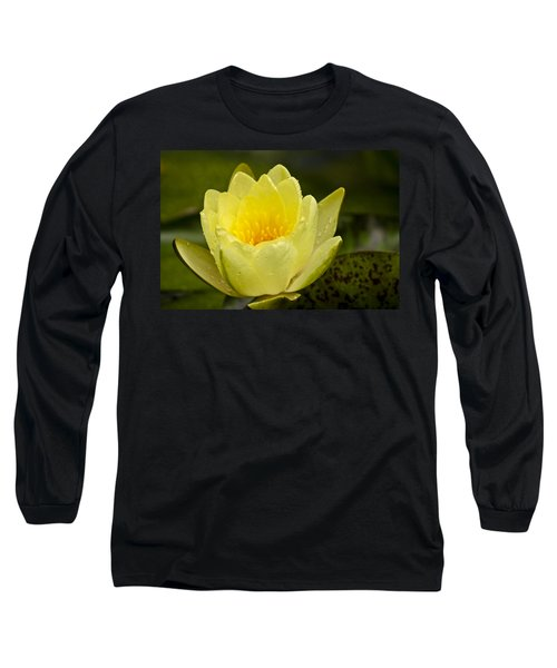 Yellow Water Lilly Long Sleeve T-Shirt