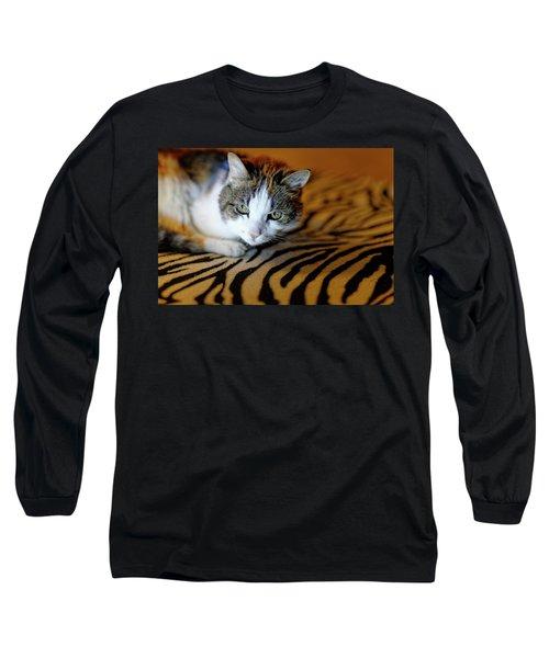 Zebra Cat Long Sleeve T-Shirt
