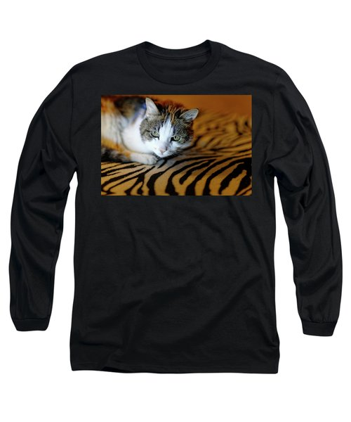 Zebra Cat Long Sleeve T-Shirt