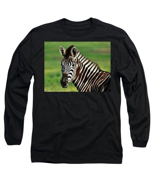 Zebra Close Up Long Sleeve T-Shirt by Werner Lehmann