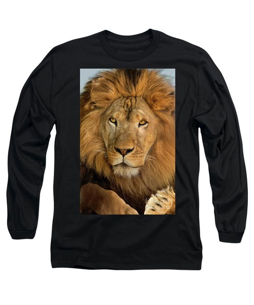 656250006 African Lion Panthera Leo Wildlife Rescue Long Sleeve T-Shirt