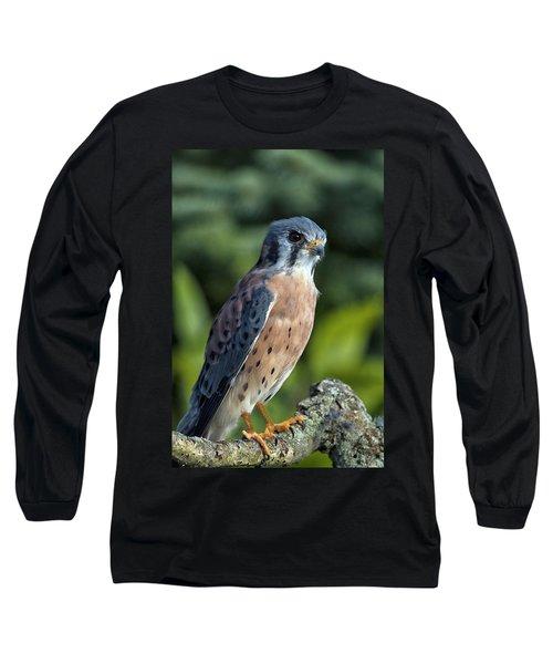 American Kestrel 9251501 Long Sleeve T-Shirt