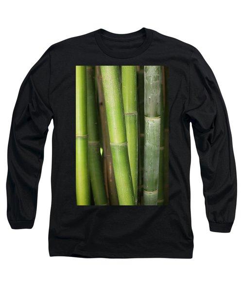 Bamboo Stalk 4057 Long Sleeve T-Shirt