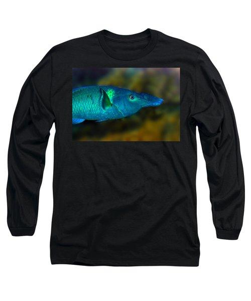 Bird Wrasse Long Sleeve T-Shirt