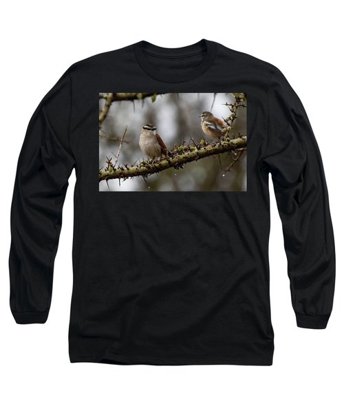 Black-crowned Tchagra And White-browed Scrub-robin Long Sleeve T-Shirt