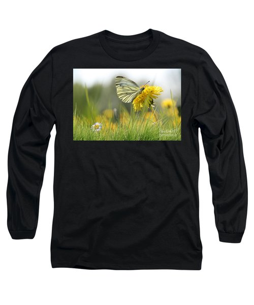 Butterfly On Dandelion Long Sleeve T-Shirt