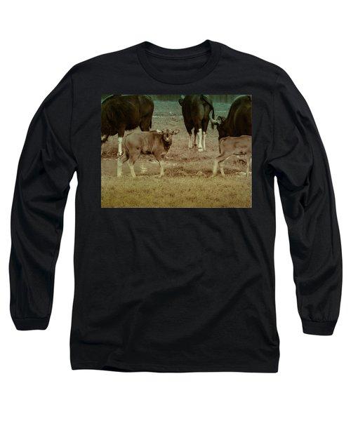 Calf Posing Long Sleeve T-Shirt