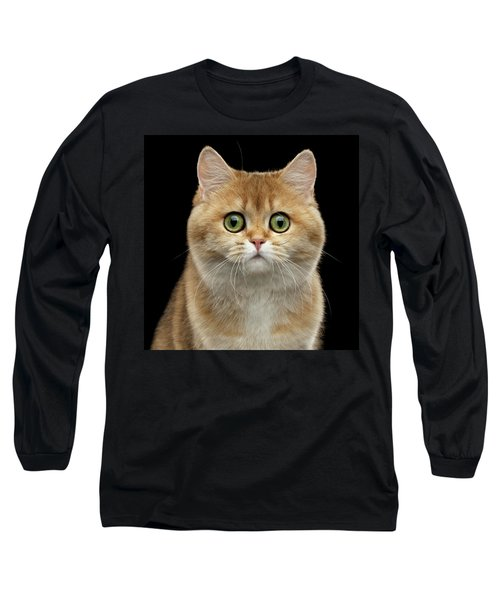 Close-up Portrait Of Golden British Cat With Green Eyes Long Sleeve T-Shirt