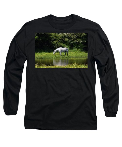 Cumbria. Ulverston. Horse By The Canal Long Sleeve T-Shirt