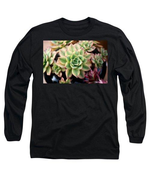 Cute Succulent Long Sleeve T-Shirt
