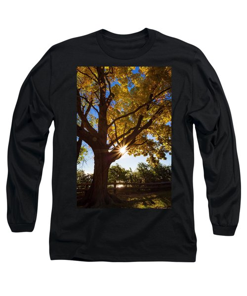 Electric Forest Long Sleeve T-Shirt