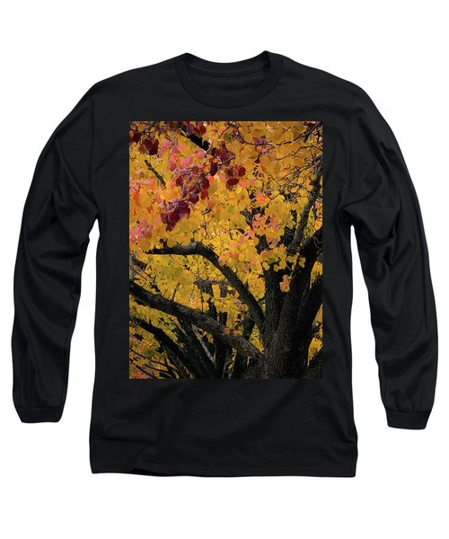 Fall In Carlyle Long Sleeve T-Shirt