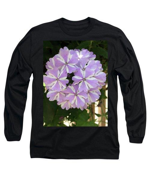Fancy Phlox Long Sleeve T-Shirt