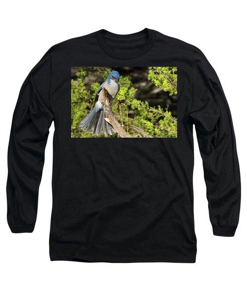 Fanning Scrub Jay Long Sleeve T-Shirt