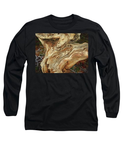 Long Sleeve T-Shirt featuring the mixed media Forest Music 2 by Lynda Lehmann