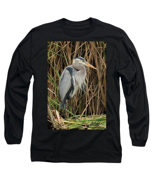 Great Blue Heron On Padre Island Long Sleeve T-Shirt