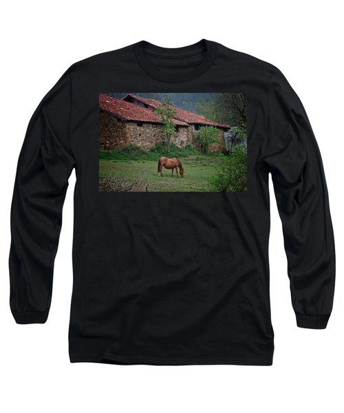 Horse In The Field Next To A Rural House Long Sleeve T-Shirt
