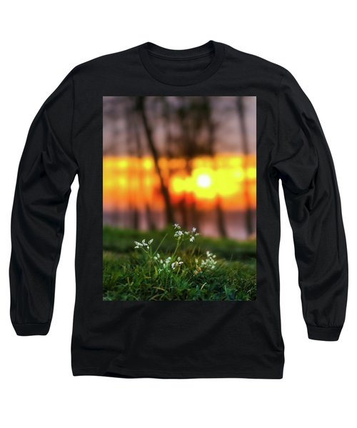 Long Sleeve T-Shirt featuring the photograph Into Dreams by Davor Zerjav