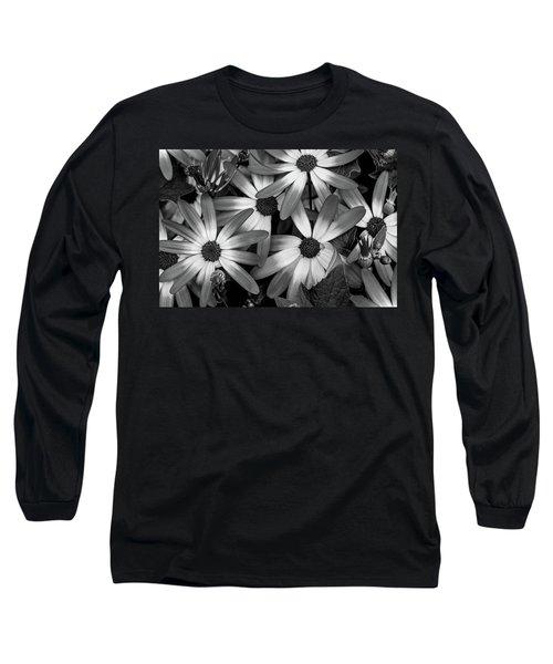 Multiple Daisies Flowers Long Sleeve T-Shirt