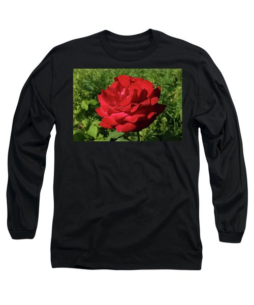 Oh The Blood Red Rose Long Sleeve T-Shirt